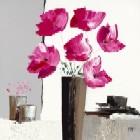 Pivoines Roses ll