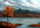 Free River
