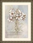 Botany lV
