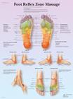 Foot Reflex Zone