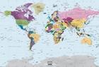 Political World Map I